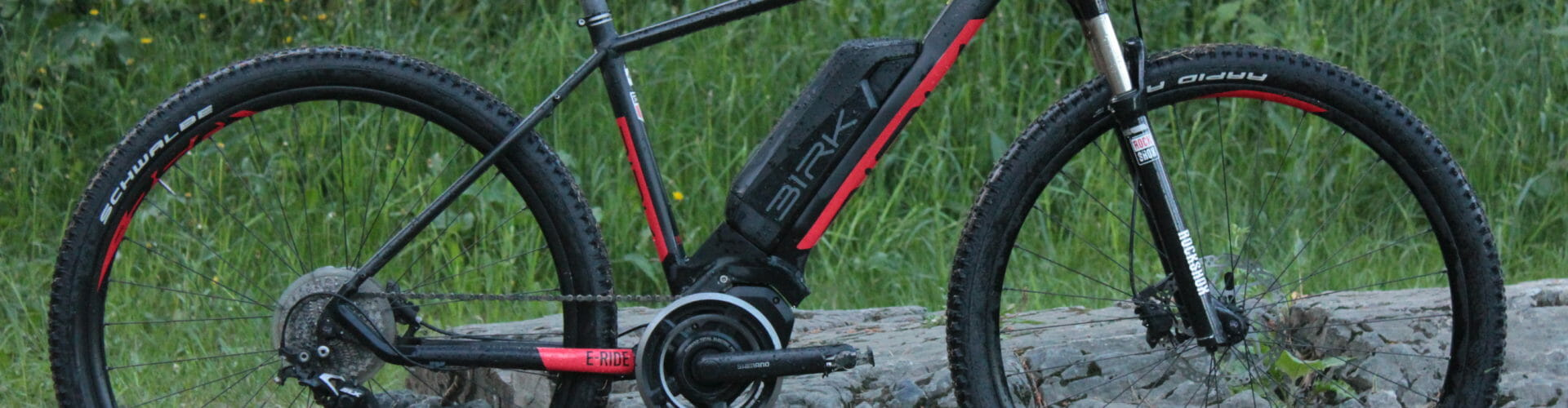 Test av elsykkel: Birk E-Ride
